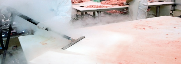 Limpeza e desinfecção de alimentos