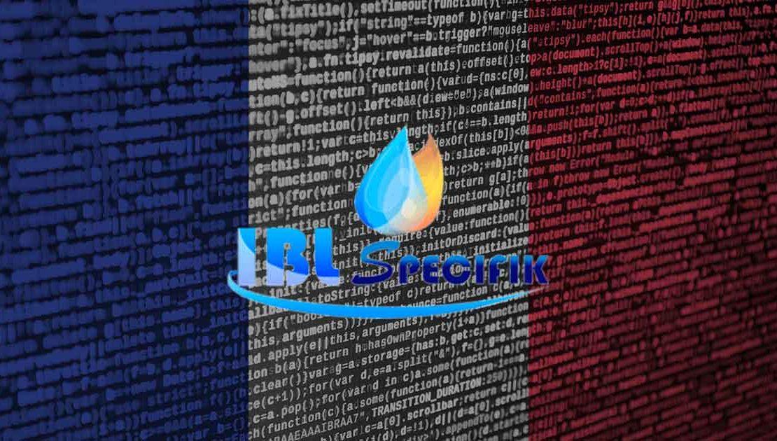 IBL SPECIFIK - liens Sécurité sanitaire - photo du drapeau français et logo superposé